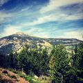 7-18-14 Instagram 004