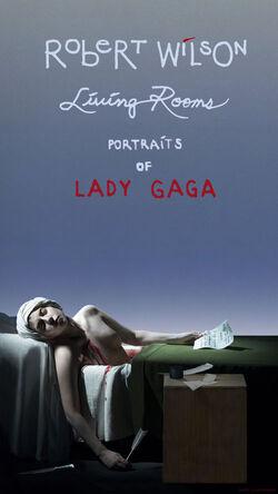 Robert Wilson Portraits of Lady Gaga Banner 001
