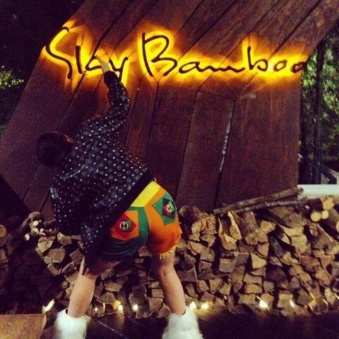 File:8-15-14 At Slay Bamboo Restaurant in Seoul 002.jpg