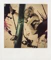 8-5-09 Nobuyoshi Araki 003-paintedpolaroid