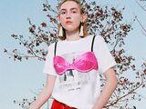Joanne World Tour/Merchandise