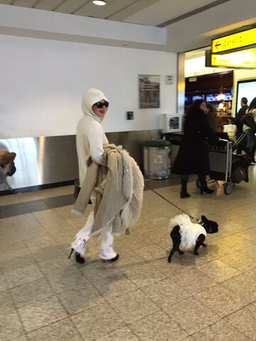 File:12-26-15 Arriving at LaGuardia Airport in NYC 001.jpeg