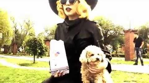 """MONSTERVISION No. 6 FOZZI AND ME in """"Little Paris"""""""