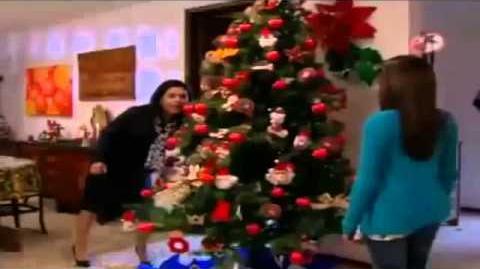 La Rosa De Guadalupe Luces De Navidad