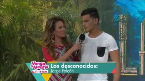 Jorge Falcón - La isla 2015