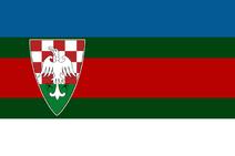 Страна 1 флаг