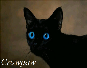 Crowpaw
