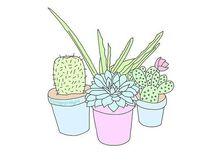 Cbaec3ac91a100a819c3933cfa8a7c29--overlays-cactus