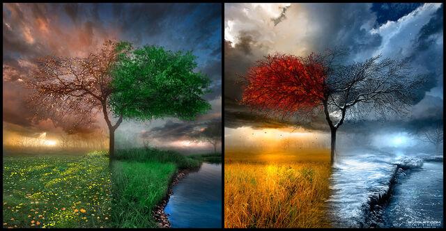 File:Seasonscape by alexiuss.jpg