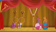 LPTBS main ponies perform