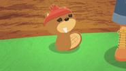 Sad Beaver