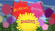 Blossom's Amazing Amazies title card