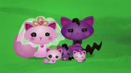 NS1E13B the Cat family