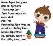Aspin evergreen