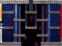 Twin Labyrinths I3
