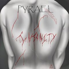 Das Cover zum Kommenden Debütalbum <b>Insanity</b>