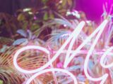 Music to Watch Boys To (song)