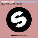 Summertime Sadness Remix