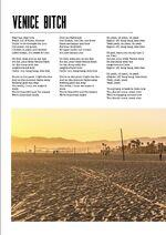 Lana lyrics book2 (40)
