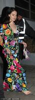 464B03D000000578-0-Nicole Scherzinger flahses her tiny waist in a double denim ense-a-80 1510563572116
