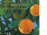 Violet Bent Backwards Over the Grass (book)
