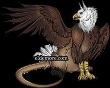 House Haliaeetus Griffin