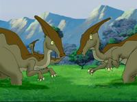 Dazed parasaurs