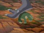 Shorty and Sharptooth