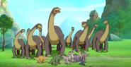 Ali's Herd