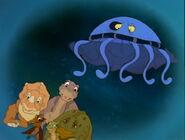 Moon Jellyfish TLBT