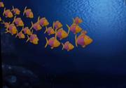 Dino fish