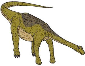 Nemegtosaurus-0