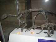 Hypsilophodons
