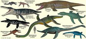 PlesiosaurModels
