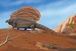 Edaphosaurus pogonias