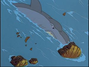 Shark V