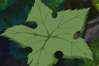 Groundstar Leaf