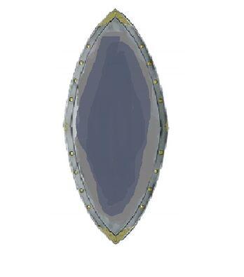 The fast biter shield