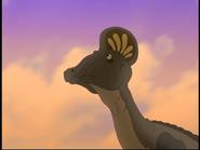 Corythosaurus TLBT