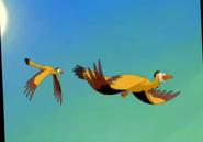 Archaeopteryx TLBT