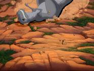 Grey Sharptooth rolls downhill 2