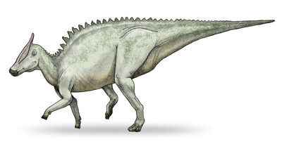 Life Restoration of Saurolophus