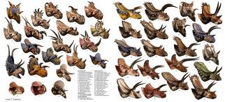 Csotonyi ceratopsians 1300