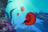 LBT Ammonite