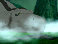 Grey Sharptooth wakes up 2