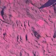 Biome Generic Stone Amaranthine01