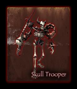19045-skull-troopers
