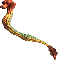 Great Worm Drar