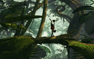 Shalla's Child Walking across Tree