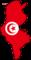 Флажок туниса